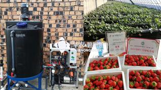 simple and quick type Fertilizing machine