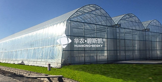 Double-layer Insulated Greenhouse-Beijing Project