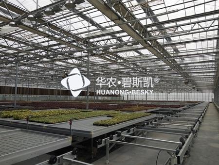 种苗繁育工厂-上海项目
