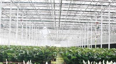 盆栽种植工厂-天津项目