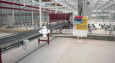 穴盘跳移设备及传送带-上海项目