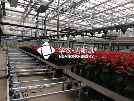 盆栽种植工厂-河南项目
