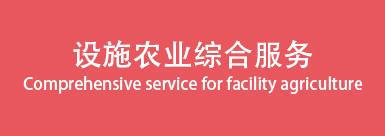 设施农业综合服务